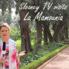 Sloaney TV: Inside the luxurious hotel and gardens of La Mamounia