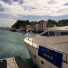 The Pommery Dorset Seafood Festival