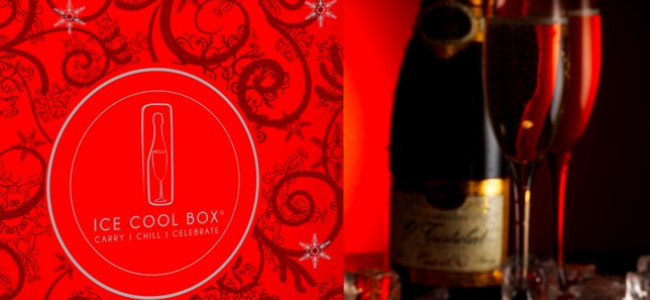 Ice Cool Box: Ideal for those who love champagne