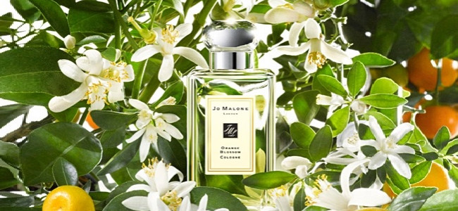 Create a bespoke scent at Jo Malone to capture your wedding memories