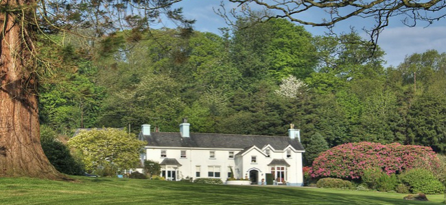 Ynyshir Hall: Enjoy a luxury hotel break with your dog in beautiful countryside