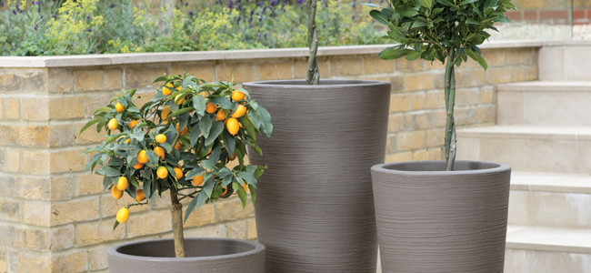 Planters to add height to your outdoor space