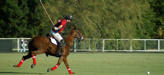 Polo experiences in London City