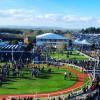 Cheltenham Festival marks the start of Sloaney Season