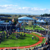 Cheltenham Festival marks the start of Sloaney Season