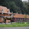 Discover Newmarket: Get exclusive access to Cheveley Park Stud