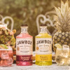 Raise A Glass: Keep the summer momentum going with Jawbox Gin