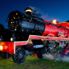 Enjoy the magic of Christmas at Longleat with a trip on the Santa Train
