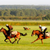 Set hearts racing on Valentine's Day with a VIP tour of the home of horseracing