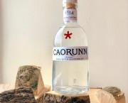 Raise A Glass: Toast the arrival of autumn with Highland gin Caorunn