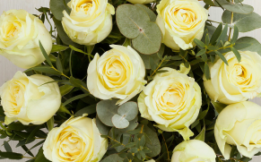 How to Create Your Own Perfume Using Flowers