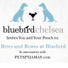 Bluebird Chelsea and PetsPyjamas to host a Bone-anza