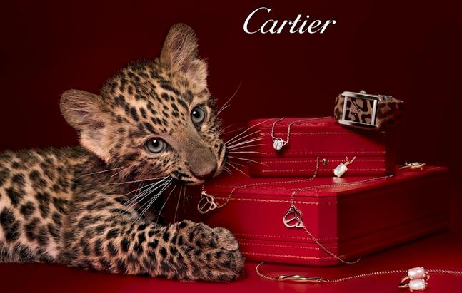 Le style et l histoire cartier showcase luxury designs at for Salon d honneur grand palais
