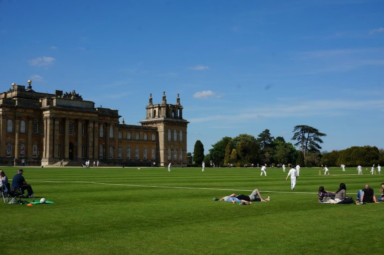 Cricket at Blenheim