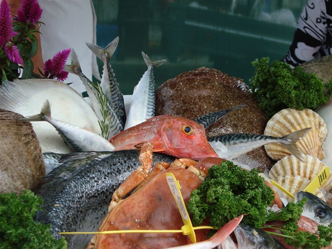 Pommery Dorset Seafood Festival