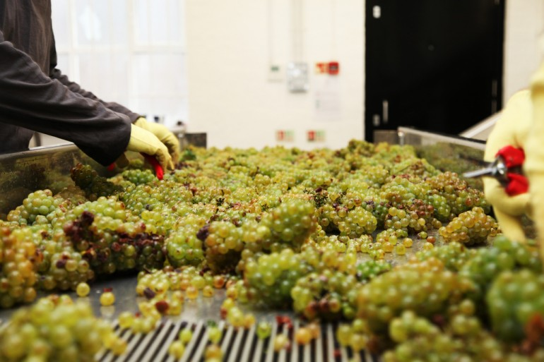 London Cru Winery