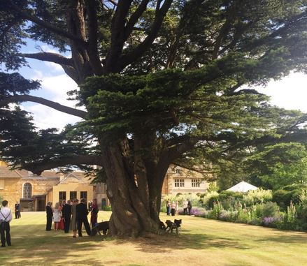 Many chose to picnic in the gardens