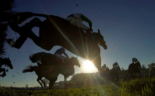 Tingle Creek Festival