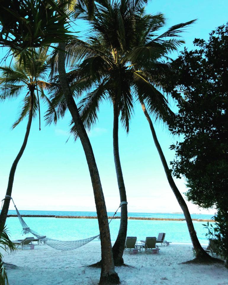 Kurumba Maldives is a beautiful island